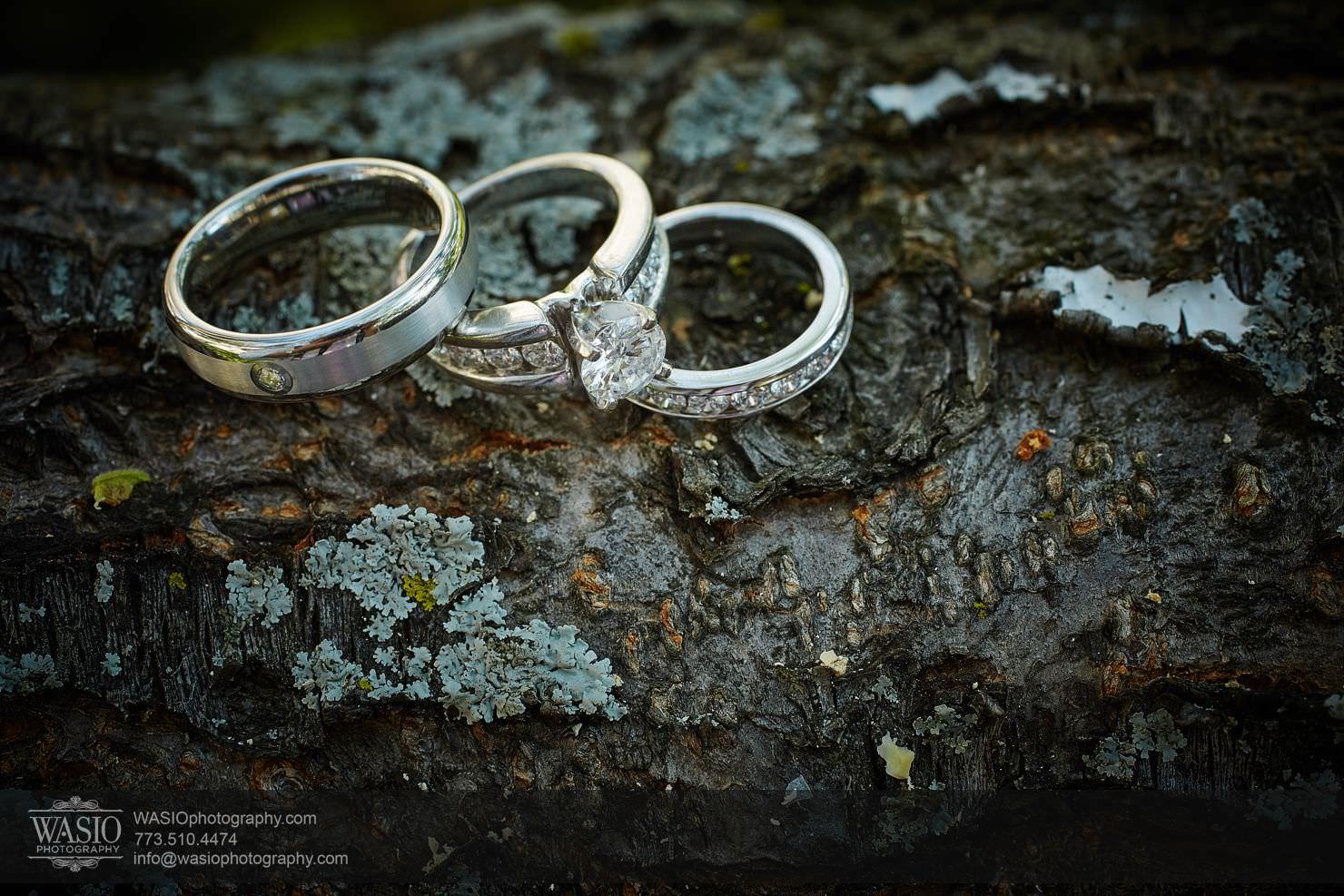 05_Chicago-Summer-Wedding_3P4C3335 Chicago Summer Wedding - Angelica & Pawel