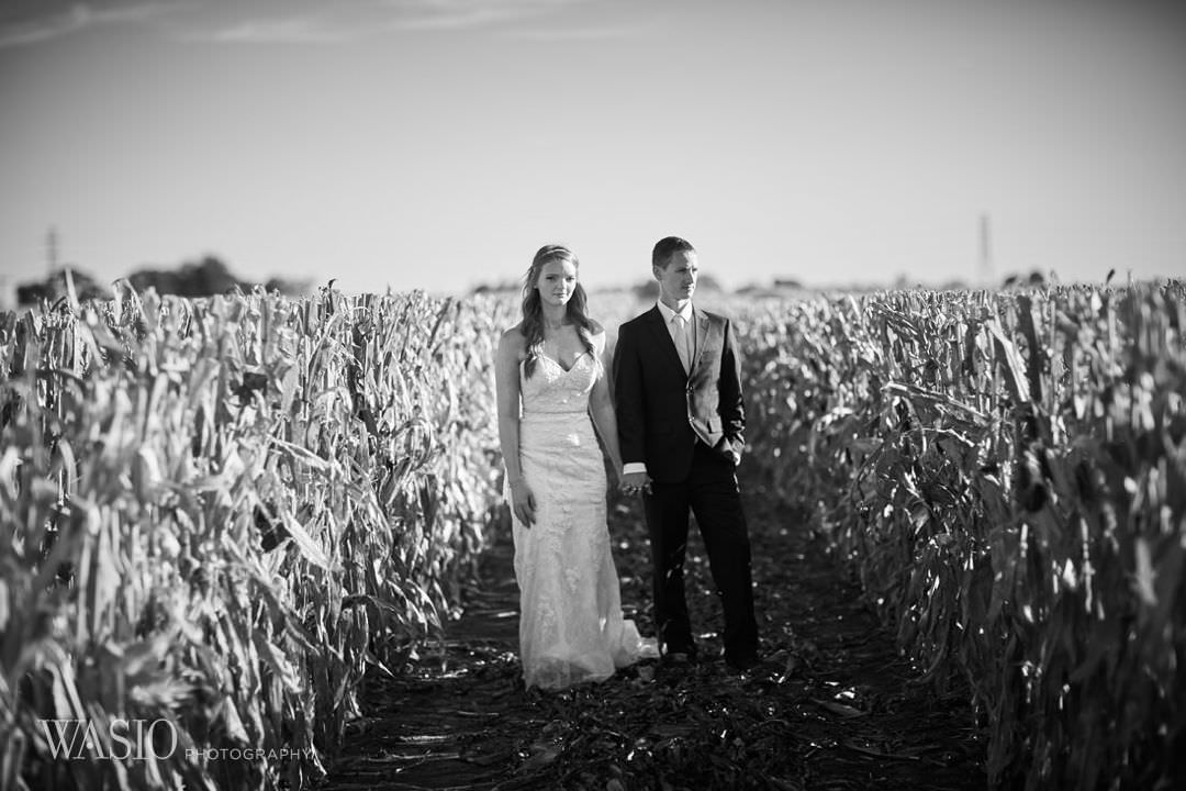 25-chicago-bride-groom-black-and-white-photography Starved Rock Ottawa Utica Wedding - Emily & Nathan