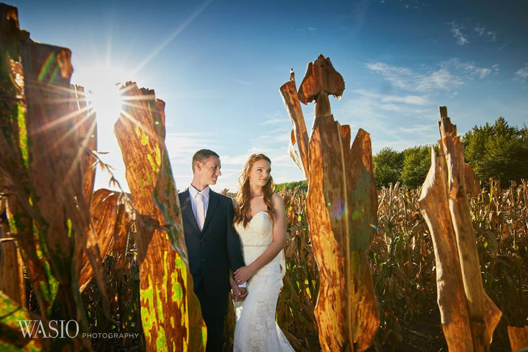 26-chicago-wedding-photography-portrait-classy-outdoor Starved Rock Ottawa Utica Wedding - Emily & Nathan