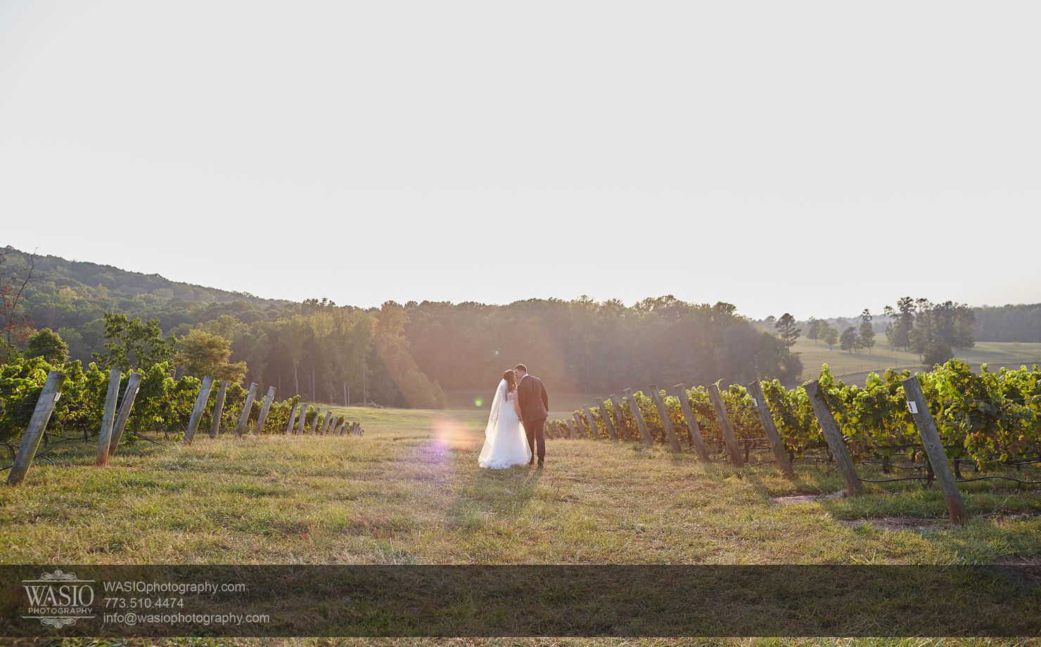 28_Raffaldini-Vineyards-Wedding_Christine-Lawson_0O3A9224 Raffaldini Vineyards Wedding - Christine & Lawson