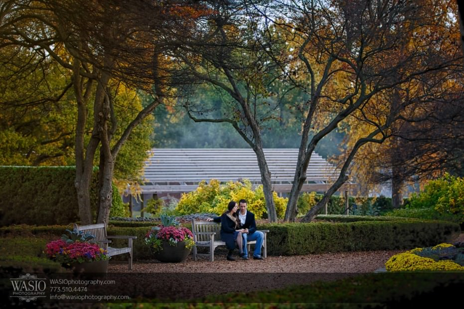 Cantigny-Garden-Engagement-nature-fall-colors_79-931x620 Cantigny Garden Engagement - Carol + Paul