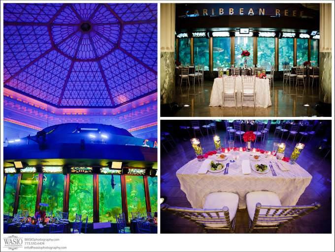 Chicago-Wedding-Photographer_053-680x513 Shedd Aquarium Wedding & Grant Park's Tiffany Garden - Julie & Caleb