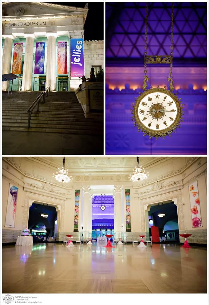Chicago-Wedding-Photographer_Shedd-Aquarium-680x989 Shedd Aquarium Wedding & Grant Park's Tiffany Garden - Julie & Caleb