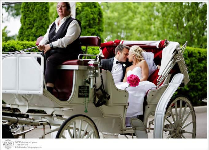 Chicago-Wedding-grant-park-white-carriage-horse-romantic-downtown-680x488 Shedd Aquarium Wedding & Grant Park's Tiffany Garden - Julie & Caleb