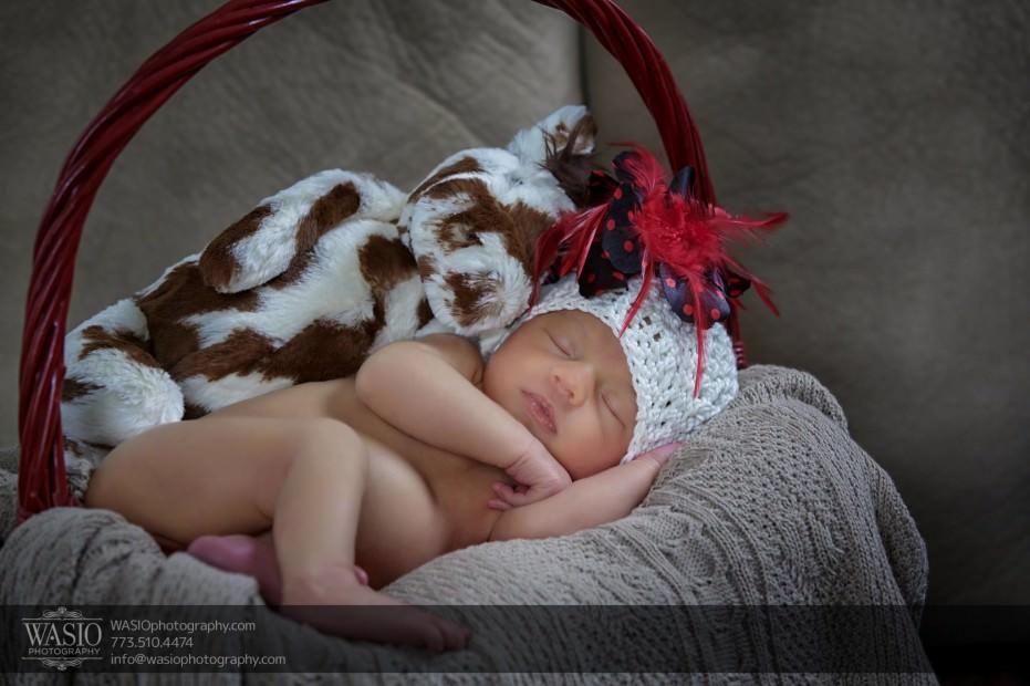 Chicago-baby-photography-cute-love_04-931x620 Chicago newborn photography - Anastasia