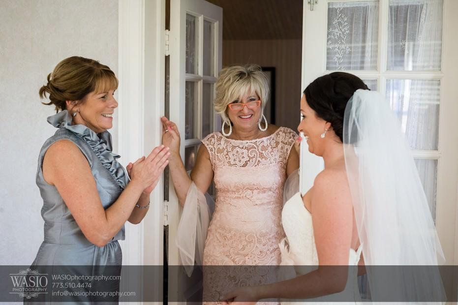 Chicago-wedding-photographers-Danada-house-venue_067-931x620 Rustic Danada House Wedding - Meagen+Mike