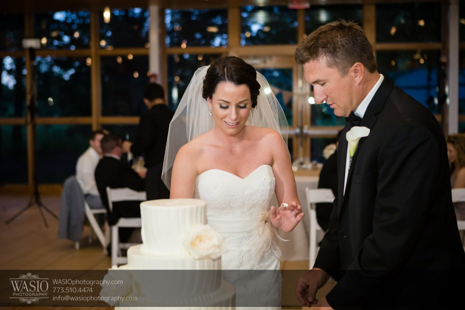 Chicago-wedding-photographers-Danada-house-venue_100-931x620 Rustic Danada House Wedding - Meagen+Mike