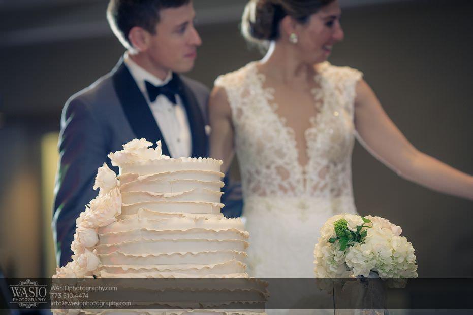 DN-WED-153P4C1739 Chicago Rustic Wedding - Dana + Nolan