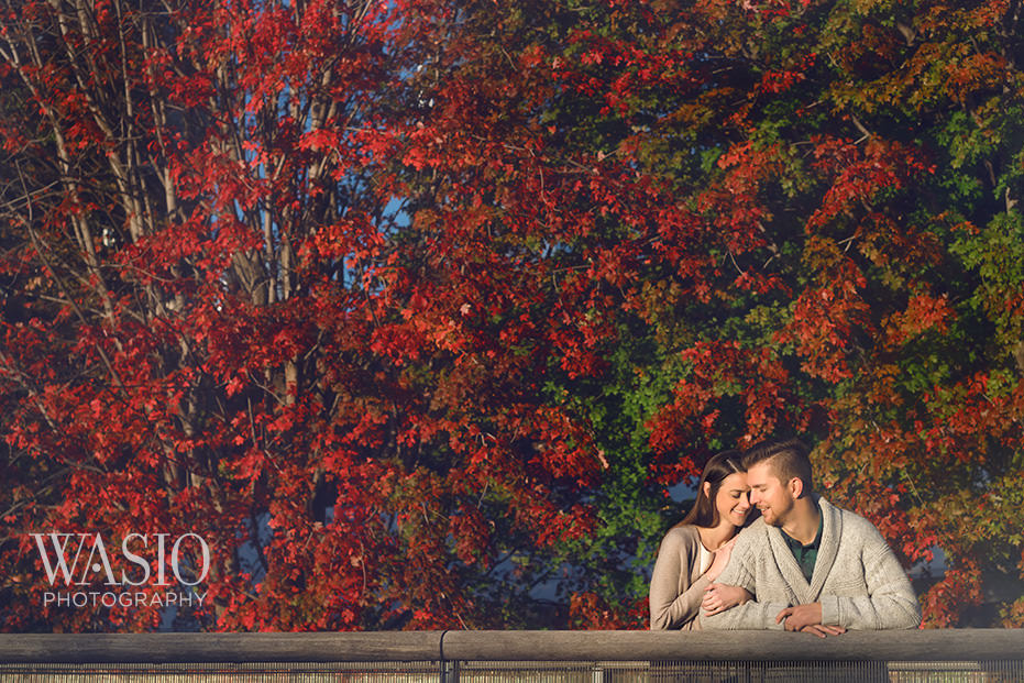 Engagement-Picture-Ideas-Fall-Colors-Leaves-Indian-Summer-Romantic Engagement Picture Ideas - Allie and Clayton