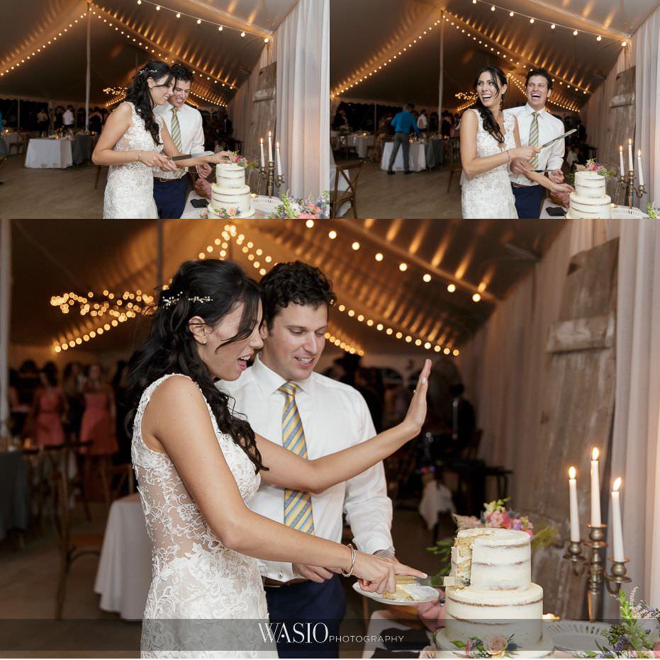 Heritage-Prairie-Farm-Wedding-bride-groom-cake-cutting-71 Heritage Prairie Farm Wedding