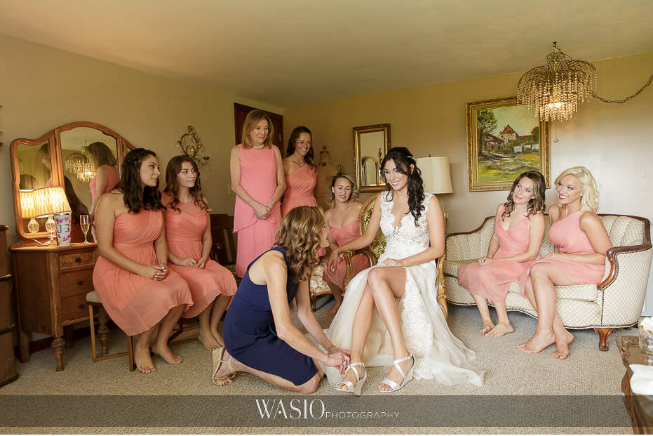 Heritage-Prairie-Farm-Wedding-bride-portrait-bridesmaids-bridal-party-blush-dresses-fun-79 Heritage Prairie Farm Wedding
