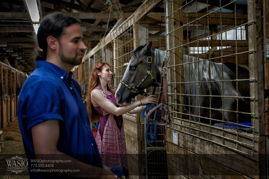 Horse-barn-engagement-beautiful-fun-094-931x620 A horse barn engagement - Sarah + Jorge