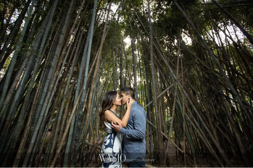 Los Angeles Arboretum Engagement – Armi and Omar