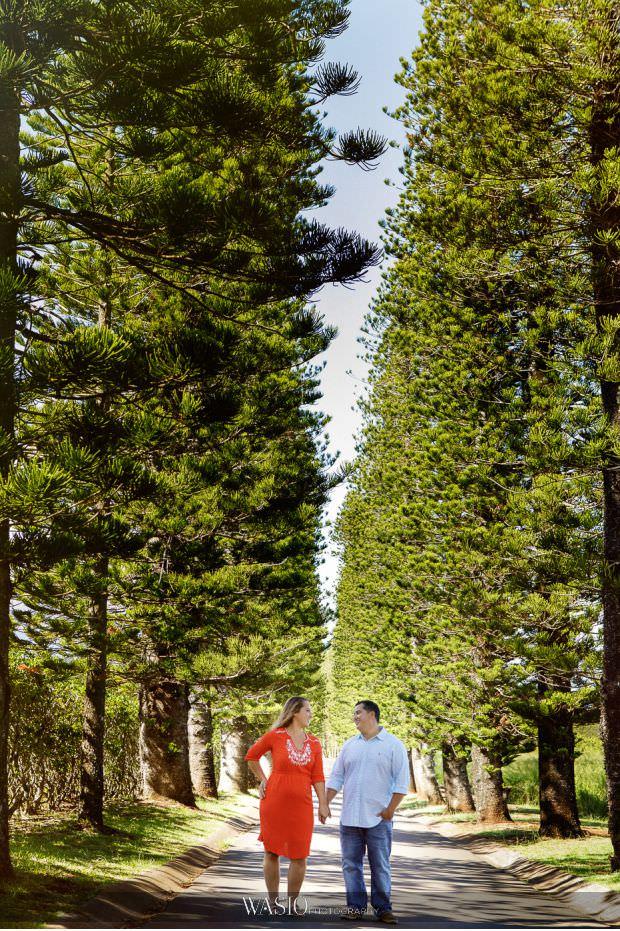 Maui-engagement-session-landscape-portrait-tall-pine-trees-Hawaii-ironwood-drive-Kapalua-20 Romantic Maui Engagement Session - Kristen and Frank