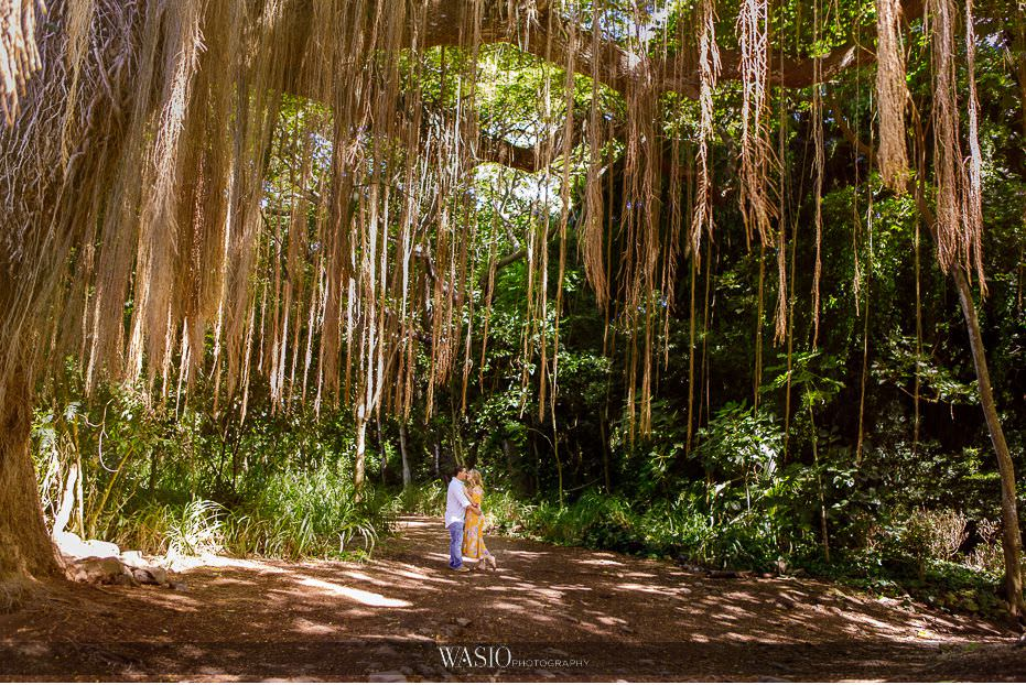Maui-engagement-session-landscape-tarzan-beautiful-nature-passionate-kiss-love-romantic-Hawaii-old-tree-timeless-Honolua-Bay-15 Romantic Maui Engagement Session - Kristen and Frank