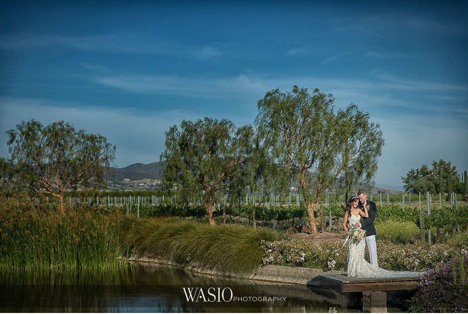 Ponte-Winery-Temecula-Wedding-landscape-blue-skies-bride-groom-portrait-46 Ponte Winery Temecula Wedding  - Erin and Scott