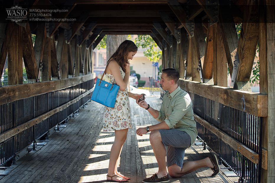 Romantic Proposal – Alina + Mike