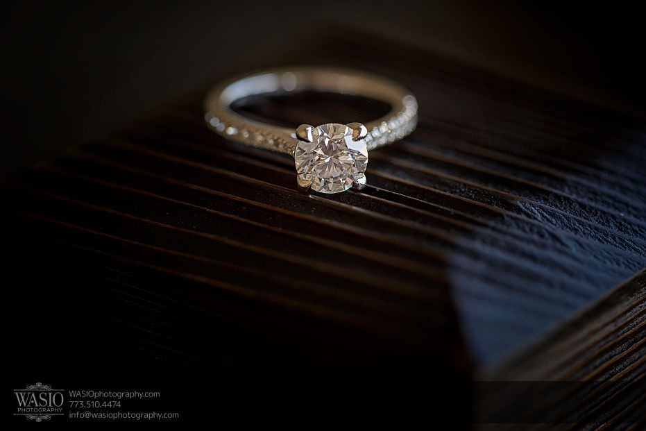 Romantic-proposal-pink-with-diamonds-engagement-ring-119 Romantic Proposal - Alina + Mike