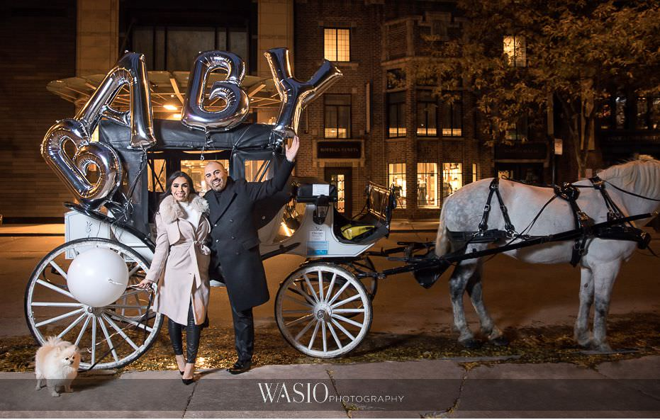 The-perfect-anniversary-photo-shoot-best-pregnancy-announcement-horse-carriage-white-horse-romantic-balloons-baby-61 The Perfect Anniversary Photo Shoot - Nicole & Anthony