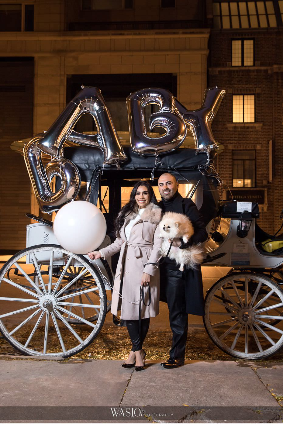 The-perfect-anniversary-photo-shoot-pregnancy-announcement-baby-on-the-way-white-horse-carriage-perfect-62 The Perfect Anniversary Photo Shoot - Nicole & Anthony
