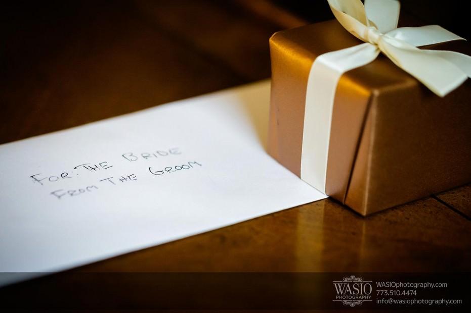 WASIO-Chicago-Wedding-Photography-0005-surprise-gift-931x620 Cantigny Park Wedding - Danielle+David