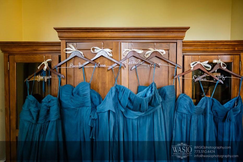 WASIO-Chicago-Wedding-Photography-0006-bridesmaids-dresses-931x620 Cantigny Park Wedding - Danielle+David