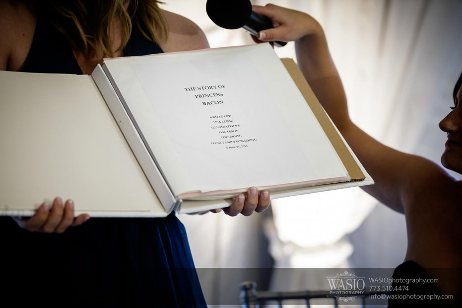 WASIO-Chicago-Wedding-Photography-0033-maid-of-honor-speach-funny-931x620 Cantigny Park Wedding - Danielle+David