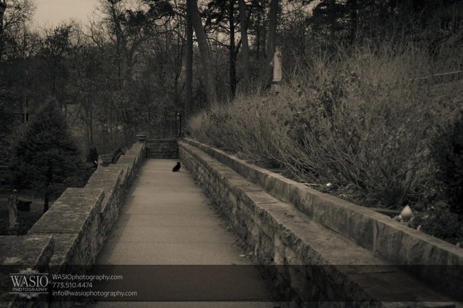arkansas-hiking-hot-springs-4125-931x620 Arkansas Hiking - Bentonville/Eureka Springs