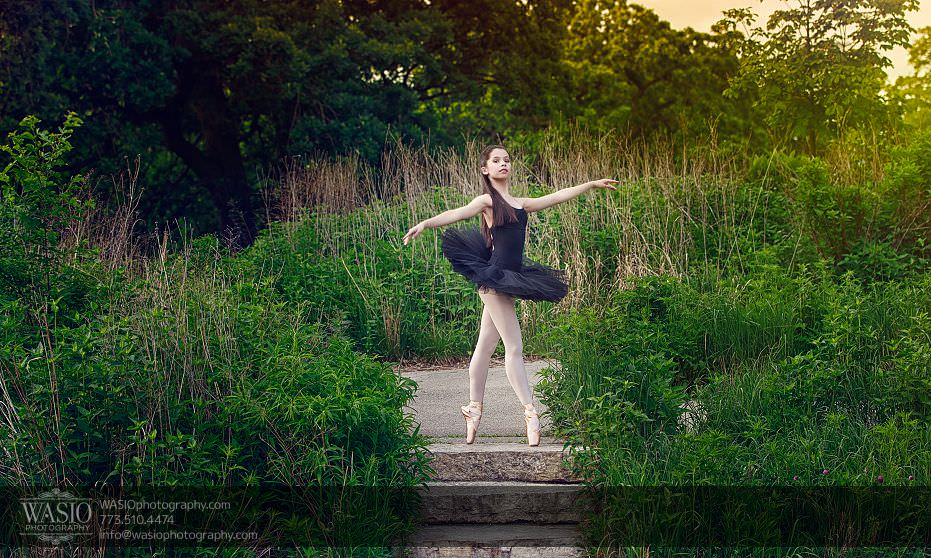 dance-photography-ballerina-Lincoln-Park-Zoo-nature-black-swan-145 Dance Photography - Alexandra