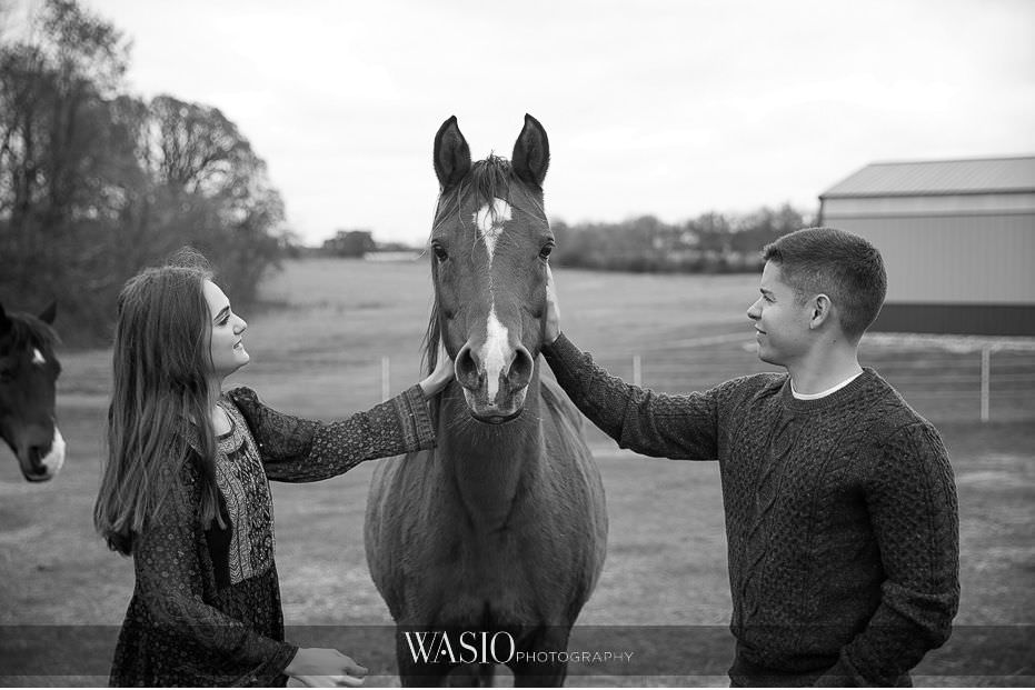 fall-engagement-pictures-beautiful-horse-california-chicago-photos-94 The Most Romantic Fall Engagement Pictures - Julia and Luis