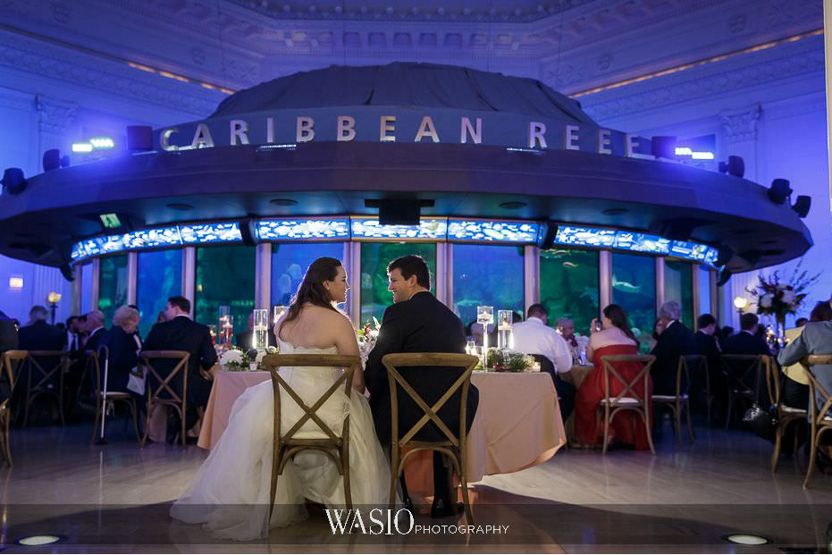 the-knot-best-of-weddings-hall-of-fame-blog-Shedd-Aquarium-Caribbean-Reef-wedding-48 The Knot Best of Weddings Hall of Fame - WASIO Photography