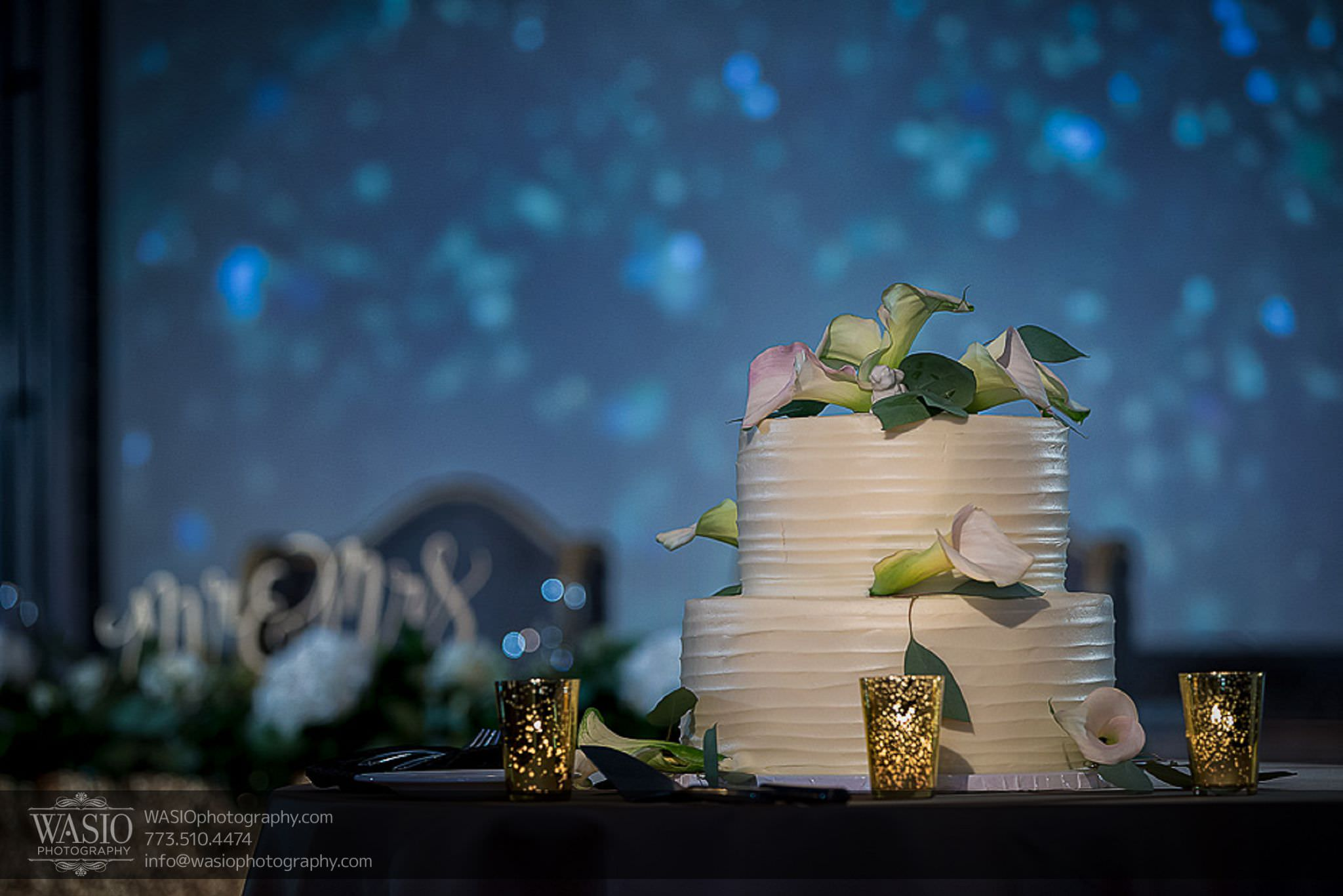 venue-one-chicago-wedding-sweet-mandy-bs-wedding-cake-bunnies-67 Venue One Chicago Wedding - Katie + Mike